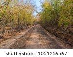 rural dirt road and bamboo...   Shutterstock . vector #1051256567