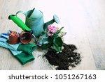 garden tools and flowers  the...   Shutterstock . vector #1051267163