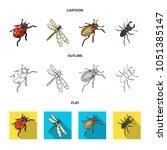 arthropods insect ladybird ...   Shutterstock .eps vector #1051385147