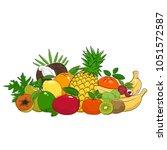 set of fresh summer tropical... | Shutterstock .eps vector #1051572587