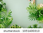 Tropical Leaves And Plants  On...