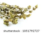 Small photo of Dry herb of mountain tea (Sideritis raeseri). It has been traditionally used to aid digestion, strengthen the immune system and suppress common cold, the flu and other viruses and allergies.