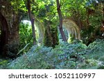 roman aqueduct in an abandoned... | Shutterstock . vector #1052110997