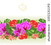 floral border seamless... | Shutterstock .eps vector #1052131193