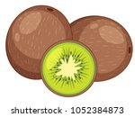 fresh kiwi fruit on white... | Shutterstock .eps vector #1052384873