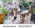 Woman In Floral Dress Walking...