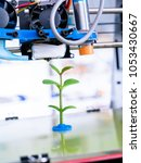 young plant growing.3d printer... | Shutterstock . vector #1053430667
