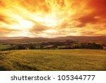 Green Meadow Under Sunset Sky...