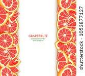 ripe grapefruit fruit vertical...   Shutterstock .eps vector #1053877127