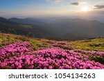 green valley high on the...   Shutterstock . vector #1054134263