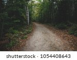 forest trail during early fall... | Shutterstock . vector #1054408643