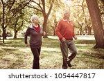 active seniors couple having... | Shutterstock . vector #1054447817