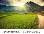 green rice fields in ta phin... | Shutterstock . vector #1054478417