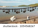 said love of the lock on the... | Shutterstock . vector #1054568267
