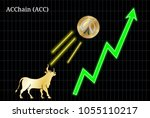 Gold bull, throwing up ACChain (ACC) cryptocurrency golden coin up the trend. Bullish ACChain (ACC) chart