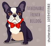fashionable cute french bulldog ... | Shutterstock .eps vector #1055455583