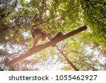 teenager having fun on high... | Shutterstock . vector #1055462927