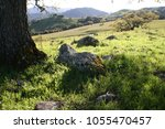 countryside with green rolling... | Shutterstock . vector #1055470457