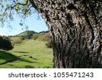 countryside with green hills  | Shutterstock . vector #1055471243