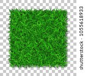 grass square. beautiful green... | Shutterstock .eps vector #1055618933