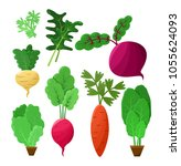 vitaminic vegetable collection...   Shutterstock .eps vector #1055624093