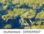 aerial view to okavango | Shutterstock . vector #1055659037