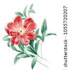 flowers carry the scent of... | Shutterstock . vector #1055720207