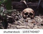still life image of skull and... | Shutterstock . vector #1055740487