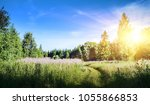 rural road landscape. summer...   Shutterstock . vector #1055866853