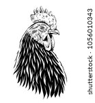 vector rooster illustration.... | Shutterstock .eps vector #1056010343