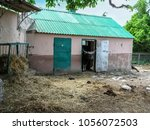 Small photo of Ukraine, Kharkiv - May 28, 2015: The horned head of a bull gaur looks out from the cowshed in the Kharkov Zoo. A colorful landscape - a farm yard, a barn, hay scattered around on the ground and gayal