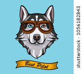 siberian husky dog pilot....   Shutterstock .eps vector #1056182843