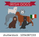 dogs by country of origin.... | Shutterstock .eps vector #1056387233