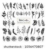 floral notes botanical... | Shutterstock .eps vector #1056470807