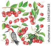 watercolor hand drawn... | Shutterstock . vector #1056518453