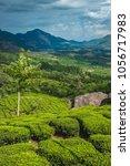 tea plantations in kerala | Shutterstock . vector #1056717983