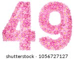 arabic numeral 49  forty nine ... | Shutterstock . vector #1056727127