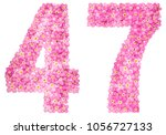 arabic numeral 47  forty seven  ... | Shutterstock . vector #1056727133