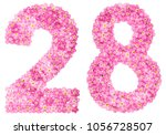arabic numeral 28  twenty eight ... | Shutterstock . vector #1056728507