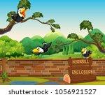 scene with three hornbill birds ... | Shutterstock .eps vector #1056921527