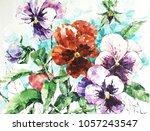 pansy flower. acrylic sketch.... | Shutterstock . vector #1057243547