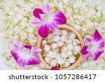 top view  jasmines  orchid in... | Shutterstock . vector #1057286417