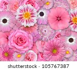 Selection Of Various Pink Whit...