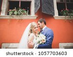 perfect couple bride  groom... | Shutterstock . vector #1057703603