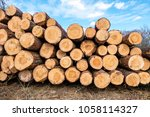 firewood for the winter  stacks ... | Shutterstock . vector #1058114327