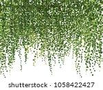 realistic vector ivy plant... | Shutterstock .eps vector #1058422427