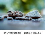 ayurvedic herb kuanch cowhage... | Shutterstock . vector #1058440163