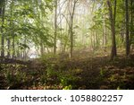 rainy weather with fog and haze ... | Shutterstock . vector #1058802257
