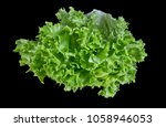 green salad isolated on black...   Shutterstock . vector #1058946053