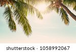palm trees against sunny... | Shutterstock . vector #1058992067